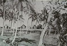 """""""A bela e aprazível Pituba em 1916"""" Texto de Nelson Cadena Foto de 1916  A Pituba era um lugar ermo. Tão distante do centro da cidade que não tinha linha de bonde para o local, tão raros eram os moradores; o jeito era ir de carroça, ou de carro, pela estrada arenosa da Ubarana. A paisagem era de pequenas casas de pescadores, de taipa e cobertura de palha, e milhares de coqueiros que faziam sombra para tornar mais agradável a brisa da virada da maré. Mas já tinha um comércio primitivo, a…"""
