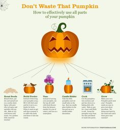 Organic Pumpkin, Don't Waste That Pumpkin #Infographic