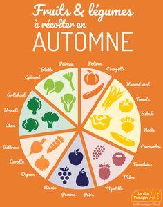 Fruits et légumes d'automne Potager Bio, Detox Breakfast, Lemon Detox, Plant Markers, Vegetable Garden Design, Sugar Detox, Green Life, Permaculture, Learn French
