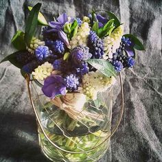 Cabbage, Vegetables, Flowers, Food, Essen, Cabbages, Vegetable Recipes, Meals, Royal Icing Flowers