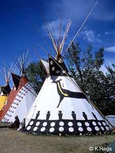Modern-day Blackfoot tipis with traditional painted lodge designs n. Native American Beauty, American Spirit, American Indian Art, Native American History, Native American Indians, Festivals Around The World, Native Indian, Way Of Life, First Nations