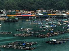 Lamm Island fishing village