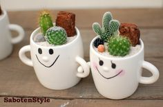 "[I put a cactus and plant it / smile family ""pair""]"