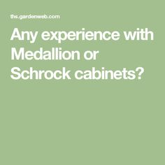 Any Experience With Medallion Or Schrock Cabinets?