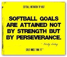 Softball goals