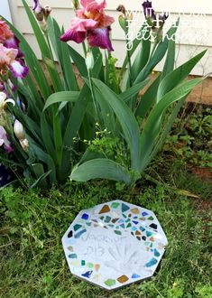Mosaic Tile Stepping Stone. Could get family members to make these for Thomas. I like it