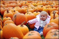 Pumpkin patch!!!