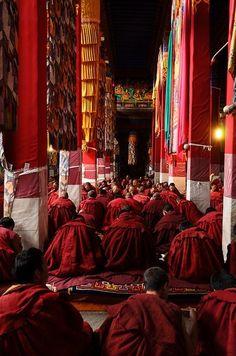 Drepung Monastery in Lhasa, Tibet Buddhist Monk, Tibetan Buddhism, Buddhist Art, Dalai Lama, Nepal, Buddha, People Around The World, Around The Worlds, Tibet