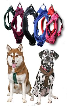 Fleece Harnesses - front + back clip