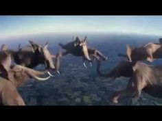 CGI animals perform stunts in France 3 TV ads. Cgi, Elephant Gif, Elephant Videos, Giraffe, Herd Of Elephants, Flying With A Baby, France 3, Channel, Computer Animation
