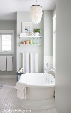 soft and elegant gray 1577 Artic Gray by Benjamin Moore