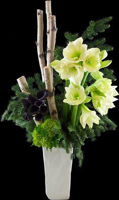 Woodland White Majesty | Winston Flowers