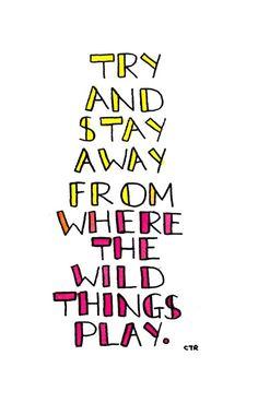 wild things - san cisco