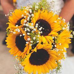 Sunflower love  Link in bio. Image @jemmakingphotography Dress @tohaveandtoholdbridalwear Flowers @the.flower.shop3