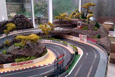 Trees at race tracks - SlotForum