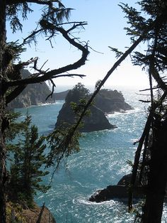 Pinner says: Brookings Oregon. One of the best places I've ever visited! Brookings Oregon, Tillamook Oregon, Places To Travel, Places To See, Oregon Travel, To Infinity And Beyond, Adventure Is Out There, Dream Vacations, The Great Outdoors
