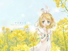 Фото Вокалоид Кагамине Рин в поле Image Boards, Vocaloid, Princess Zelda, Cute, Anime, Fictional Characters, Twins, Tears Of The Sun, Kawaii