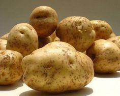 Siembra tus propias patatas -Parte I-