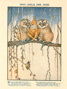 "Why Owls Are Wise: ""No wonder baby Owls grow wise, When little Elves on branches sit, And teach them how to use their eyes, At night and sing, ""To-whoo! To-Whit!"" They quickly learn, and very soon, they fly and hoot the whole night through, Although they slightly change the tune, And sing instead, ""To-whit! To-whoo!"""