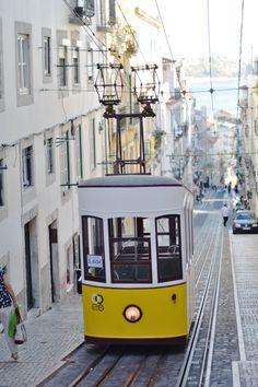 10 Lisbon Essentials