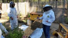 COBKA members installing a nuc into a queenless hive.