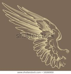 Find Detailed Wings stock images in HD and millions of other royalty-free stock photos, illustrations and vectors in the Shutterstock collection. Angel Wings Art, Owl Wings, Angel Art, Angle Wings Drawing, Art Sketches, Art Drawings, Tattoo No Peito, Wings Sketch, Wing Tattoo Designs