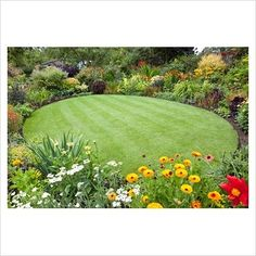 Radial lawn with planting