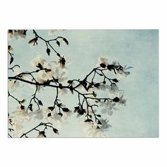 KESS InHouse Chelsea Victoria 'Bloom' Photography Nature Dog Place Mat, 13' x 18' *** Quickly view this special dog product, click the image : Dog food container