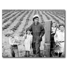 "Mrs. Arnold and kids – 1939. Post Cards. ""The Arnold children and mother on their newly fenced and newly cleared land. Note strawberry plants. Western Washington, Thurston County, Michigan Hill."" – Dorothea Lange, photographer, October 1939. (https://twitter.com/HawCreekShop/status/525297035977965568) (http://haw-creek.com/shop/sold-3/)"