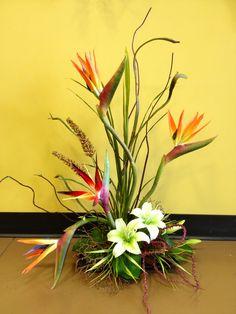 #Tropical Bird Of Paradise #arrangement @arcadiafloral