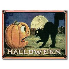 =>Sale on          Vintage Halloween Pumpkin  & Cat in Mosaic Post Card           Vintage Halloween Pumpkin  & Cat in Mosaic Post Card online after you search a lot for where to buyShopping          Vintage Halloween Pumpkin  & Cat in Mosaic Post Card Review on the This website ...Cleck Hot Deals >>> http://www.zazzle.com/vintage_halloween_pumpkin_cat_in_mosaic_postcard-239819647694848412?rf=238627982471231924&zbar=1&tc=terrest