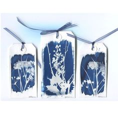 3 Wildflower Plant Sun Print Gift Tags or Bookmarks - Original Cyanotype Blue & White Alternative Process Photograms Sun Prints, Nature Prints, Cyanotype Process, Alternative Photography, Origami Paper Art, Pressed Flower Art, Shadow Art, Painted Paper, Tag Art