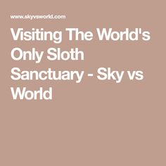 Visiting The World's Only Sloth Sanctuary - Sky vs World
