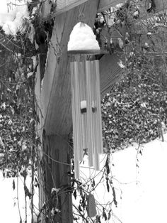 My ISO was high  My aperture was large Shutter speed medium Camera held portrait slight worms eye  positioned with the wood on left along with vines. Wind chimes in upper section. more vines in the right. Adjustments- exposure, hue, black and white Stamped out some vines and marks on the wood