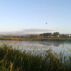 Beautiful Swartkops River. Uitenhage. South Africa.