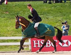 Parklane Hawk, one of 23 off-track Thoroughbreds competing at Rolex Kentucky CCI****