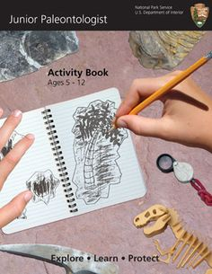 Downloadable / printable Jr. Paleontologist Activity Booklet by the National Park Service. Dinosaur dig
