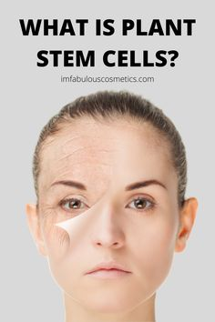 WHY PLANT STEM CELLS ARE INNOVATION IN COSMETICS? | I'M FABULOUS COSMETICS Plant Cell, Plant Stem, Aesthetic Dermatology, I'm Fabulous, Growth Factor, Stem Cells, Cosmetology, Anti Aging Skin Care, Organic Skin Care