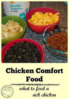 Chicken Comfort Food Best Egg Laying Chickens, Keeping Chickens, Meat Chickens, Raising Chickens, Backyard Poultry, Chickens Backyard, Backyard Birds, Building A Chicken Coop, Chicken Recipes