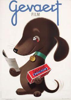 ♥♥♥ dauchshund dauchshunds weenier weeniers weenie weenies hot dog hotdogs doxie doxies ♥♥♥