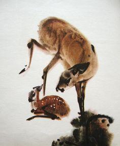 Animals We Love. Illustrator - Mirko Hanák