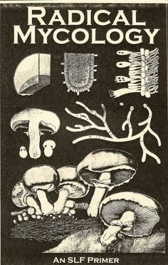 Radical Mycology (a Spore Liberation Front primer on fungi & myco-remediation and ecoactivism) Growing Mushrooms, Wild Mushrooms, Stuffed Mushrooms, Mushroom Identification, Slime Mould, Mushroom Hunting, Mushroom Fungi, Design Graphique, Mushrooms