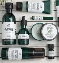 30 Brilliant Tween und Teenage Hautpflegeprodukte - der Body Shop Teebaum Range Akne Informationen zu 30 Brilliant Tween And Teenage Skincare Products P - The Body Shop, Body Shop Tea Tree, Body Shop At Home, Tree Shop, Beauty Care, Beauty Hacks, Body Shop Skincare, Joss Stone, Beauty Tips For Face