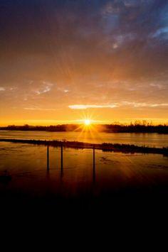 #sunrise #elbe #horizon #sonnenaufgang #horizont