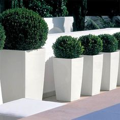 Lechuza® Cubico Color Tall Self-Watering Planters A combination of elegance and modernity, the Cubico Tall Planter's design makes the natural beauty of your plants a focal point for any space. Trough Planters, Tall Planters, White Planters, Garden Planters, Terrace Garden, Planters Around Pool, Cheap Planters, Recycled Planters, Front Door Planters