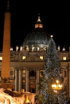Night view of Saint Peter Basilica in Christmas time. Vatican City, Italy.