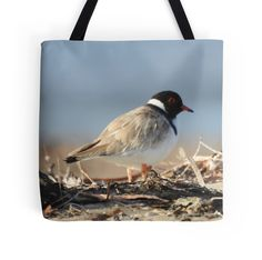 Hooded Plover  by BirdBags Small, Large & Extra Large