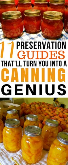 Do you have a huge vegetable garden harvest? Take your homesteading to the next step and read these 11 Food Preservation guides that will turn you into a canning genius in no time!