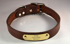 Warner Cumberland Brand leather dog collar with free brass id tag