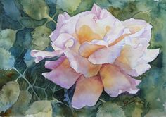 """""""Peace""""  this is a 7.5 x 11 watercolor painting by Kari Skinner  The reference photo was from a Dailypaintworks.com challenge"""